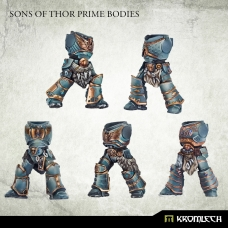 Sons of Thor Prime Bodies